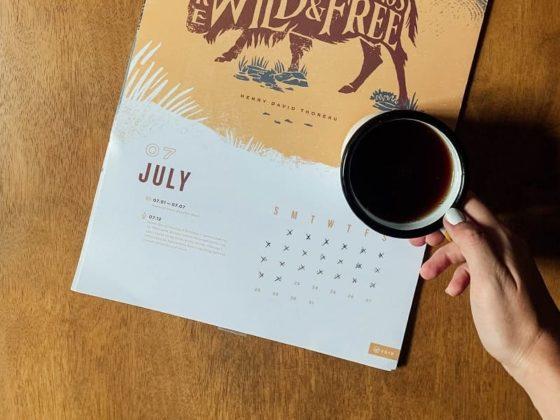 Retrouvez tous les événements du mois dans votre calendrier marronnier juillet 2020 !